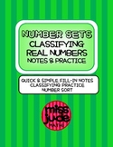 Number Sets: Classifying Real Numbers Notes & Practice ESOL Math & Algebra