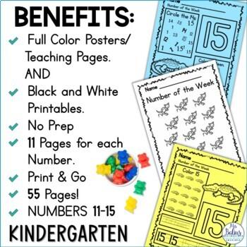 Pre-Kindergarten Math Numbers 11-15 Number of the Week Zoo Theme