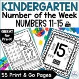 Pre-Kindergarten Math Numbers 11-15 Number of the Week Zoo Theme