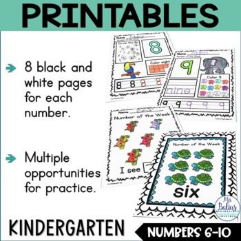 Pre-Kindergarten Math Numbers 6-10 Number of the Week Zoo Theme