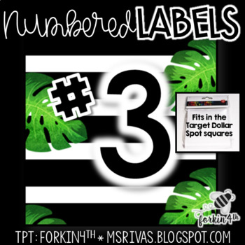 Numbered TROPICAL Square Labels (TARGET Dollar Spot)