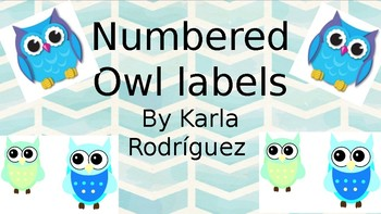 Numbered owls