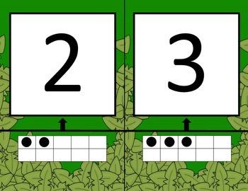Numberline Jungle