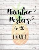 Numbers 1-30 Posters - Pineapple & Shiplap