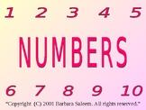 Numbers by Barbara Saleem