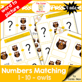 Numbers Matching 1-10 - Owls FILE FOLDER ACTIVITIES