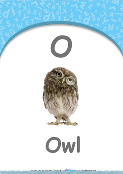 Numbers - Six : Letter O : Owl - Nursery (2 years old)