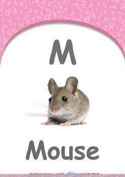 Numbers - Two : Letter M : Mouse - Pre-Nursery (1 year old)