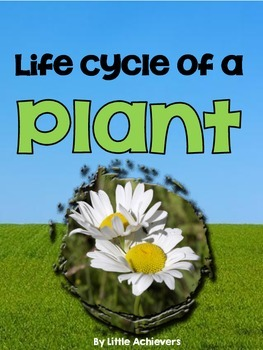 Plant Life Cycle  Booklet