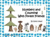 Numbers and Counting With Forest Friends