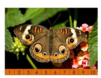 Numbers in consecutive order puzzle