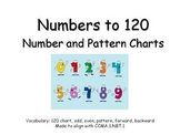 Numbers to 120 Number and Pattern Charts
