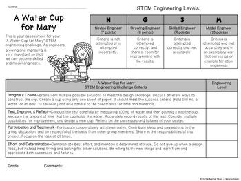 STEM Paper Cup