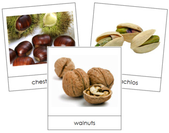 Nut Picture Cards