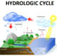 Nutrient Cycle Bundle - Carbon Cycle, Nitrogen Cycle and Water Cycle (Editable)