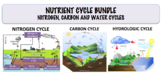 Nutrient Cycle Bundle - Carbon Cycle, Nitrogen Cycle and W