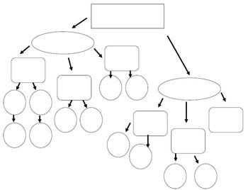 Nutrient Outline/Graphic Organizer