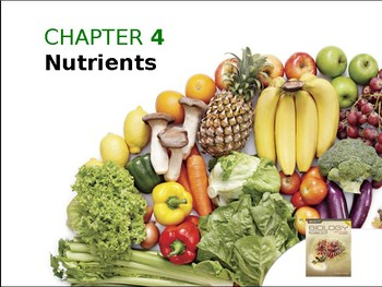 Nutrients and Enzymes Power point slides