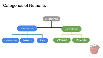 Nutrients and Health - Micronutrients