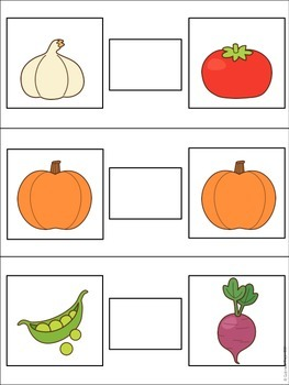 Nutrition Basic Skill Flipbooks Mini Pack