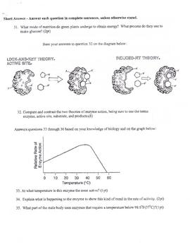 Nutrition & Digestion Test HS Biology