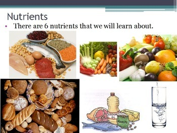 Nutrition - Essential Nutrients (POWERPOINT)