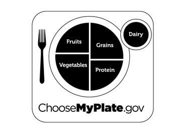 Nutrition Fruit and Veggie Plate Matching activity for preschool or daycare.