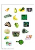 Nutrition - Plant Parts - Healthy Eating
