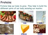 Nutrition - Protein w/worksheet (SMART BOARD)