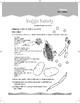 Nutrition (Ten-Minute Activities)