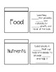 Nutrition, Vitamins, and Minerals Interactive Notebook