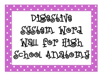 Digestive System and Nutrition Word Wall for High School Anatomy