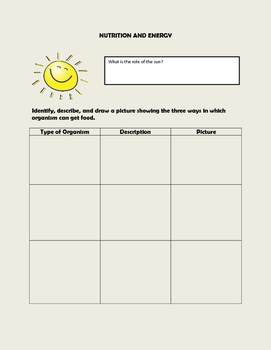 Nutrition and Energy Graphic Organizer