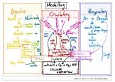 Nutrition modelling