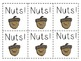 Nuts!! A Squirrel Sight Word GameDolch 3rd Grade List
