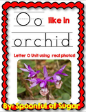 O Like In Orchid (Letter O Unit Using Real Photos!)