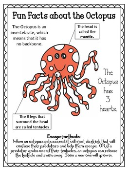 O is for Octopus.  To use with My Father's World. Alphabet Worksheets.
