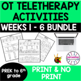 OCCUPATIONAL THERAPY Teletherapy prek-6 grade BUNDLE OT Distance Learning 6 wks.