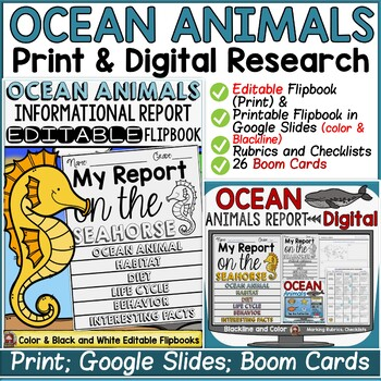 ANIMAL REPORT: OCEAN ANIMALS: INFORMATIVE WRITING