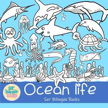 OCEAN LIFE CLIPART