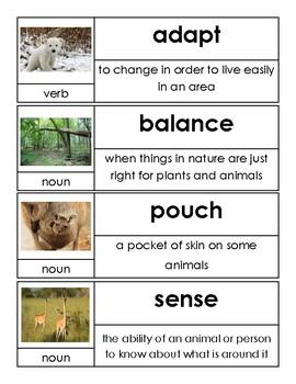Kindergarten Open Court Unit 8 Vocabulary Cards