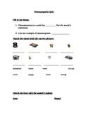 ONOMATOPOEIA worksheet and comic strip