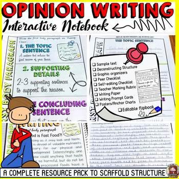 Interactive essay writing websites