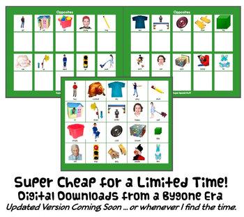 OPPOSITES MaTcH & SoRt w/ 20 PECS Cards : instant digital download speech autism
