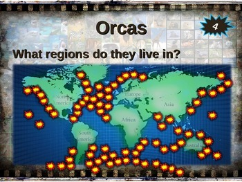 ORCA (Killer Whale) 10 facts. Fun, engaging PPT w links & free graphic organizer