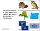 OREGON State Symbols ADAPTED BOOK for Special Education an
