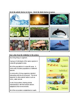ORGANIZED ECOSYSTEMS and BIOTIC/ABIOTIC FACTORS for ELLs/SPED