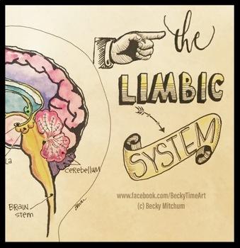 ORIGINAL ART - The Limbic System