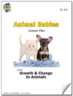 Animal Babies Lesson Plan