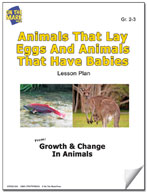 Animals That Lay Eggs and Animals That Have Babies Lesson Plan
